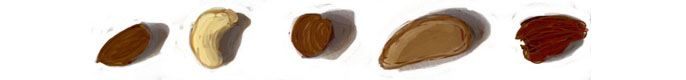5 nuts
