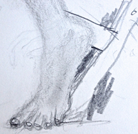 Post image for Learning to see: Drawing hands & feet