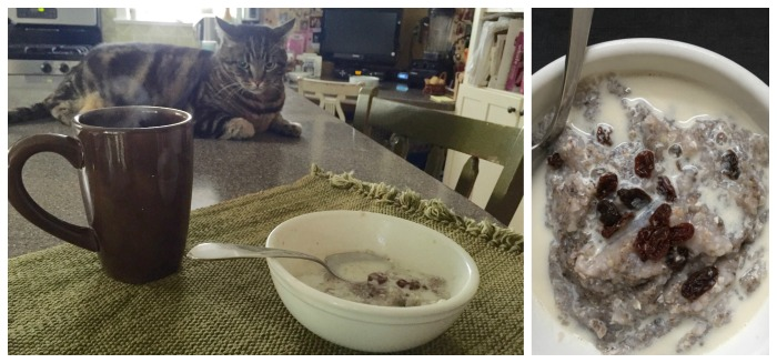 Breakfast with Minty