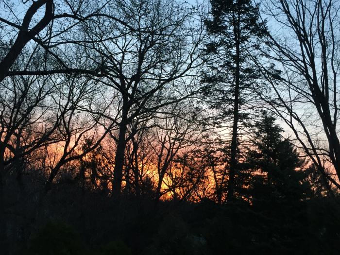 Sunrise from my bedroom window